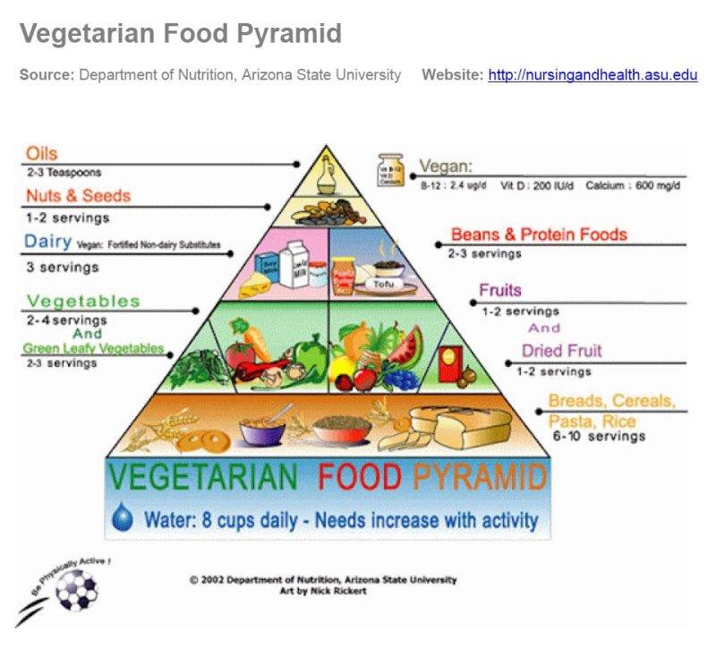 piramide nutricional para vegetarianos