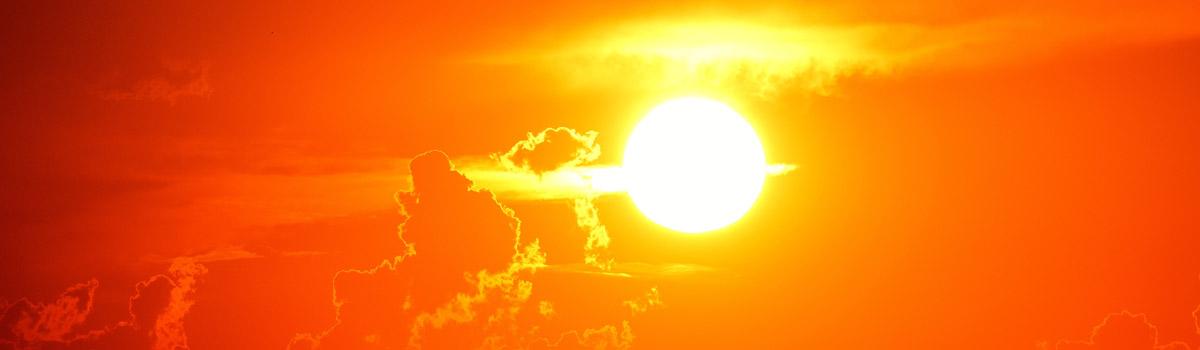 La principal fuente de vitamina D en cualquier persona, independientemente de su dieta, es el sol
