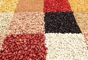 proteina vegetal