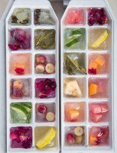 congelador vegano